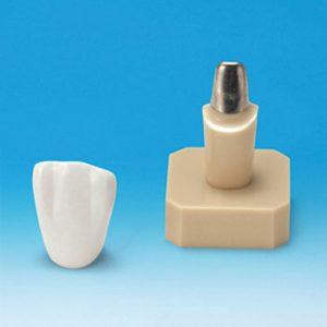 Prótesis Fija y Removible (PRO)