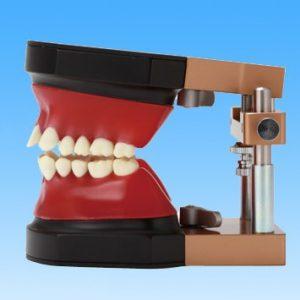 7. Modelo de Ortodoncia